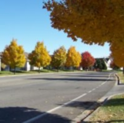 Residential Street in Fall