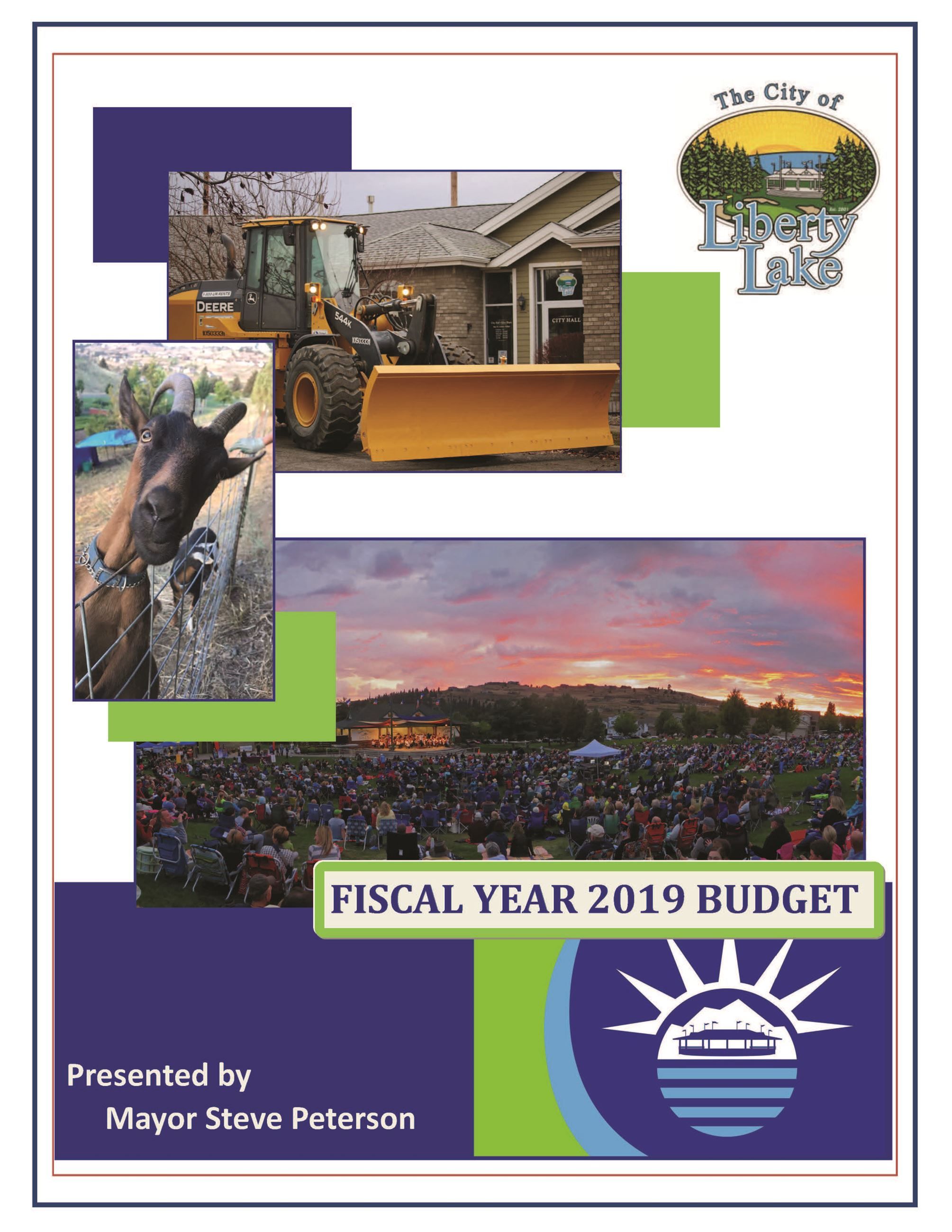 2019 Budget Cover