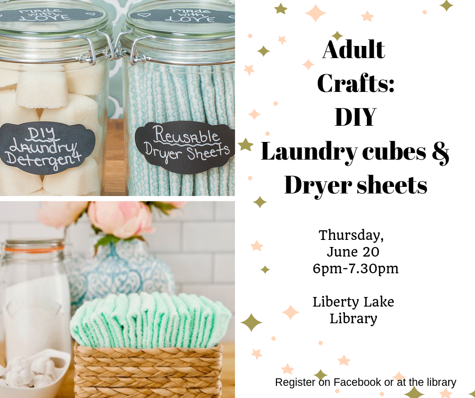 DIY Laundry cubes and Dryer Sheets June 20