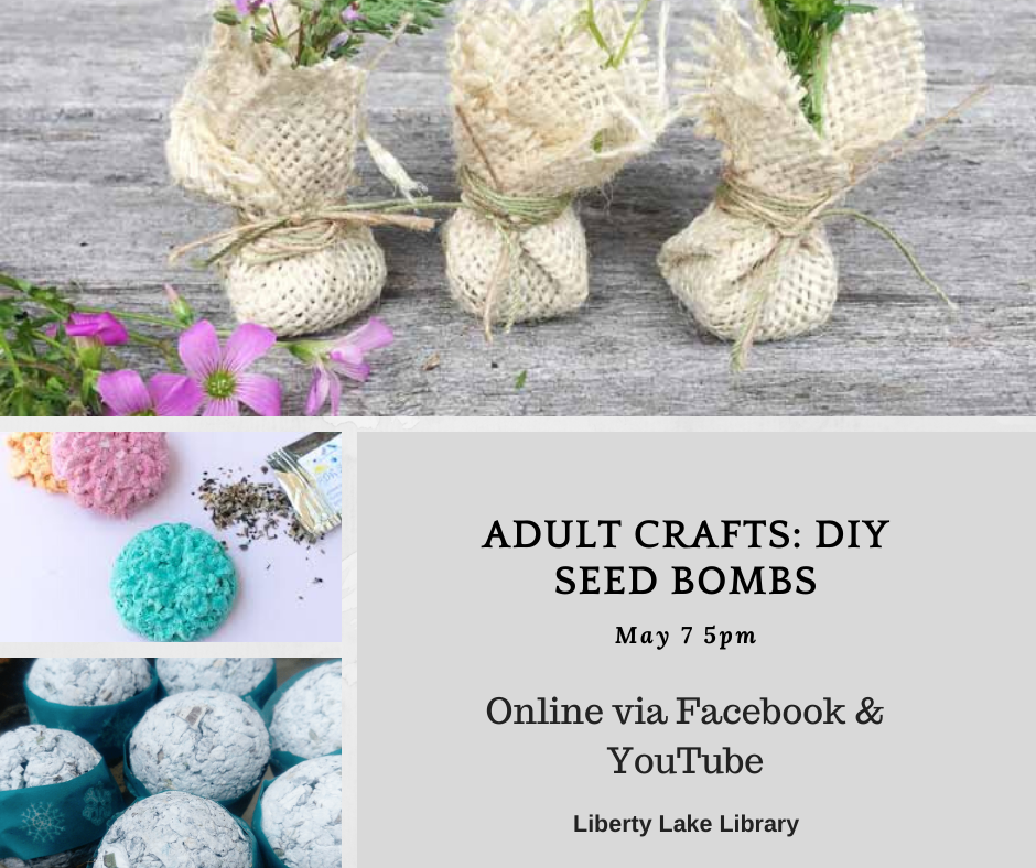 Adult Crafts - Seed Bombs